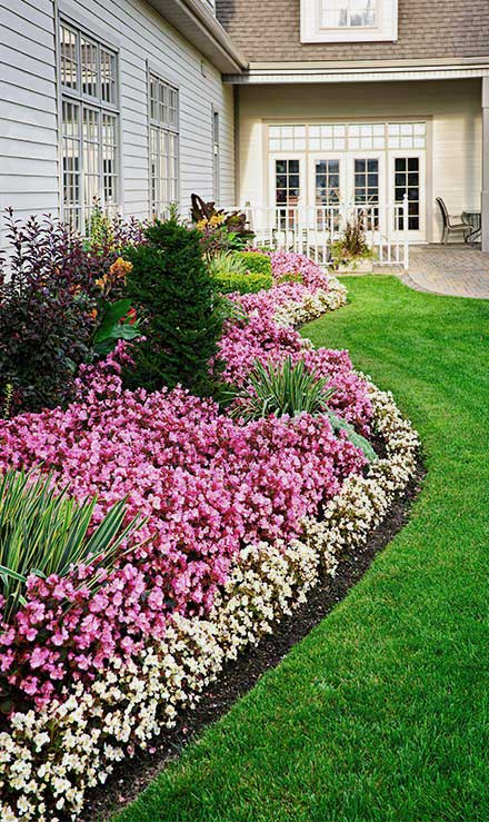 Contact Tom's Picture Perfect Landscape for Residential Landscaping Services